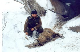 Poacher in Caucasus