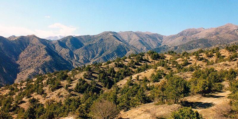 Arevik NP © WWF Armenia/A. Malkhasyan