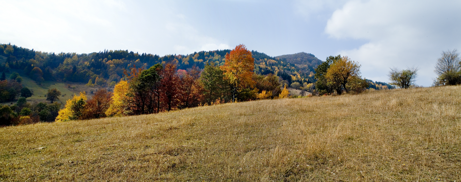 Algeti National Park, Georgia