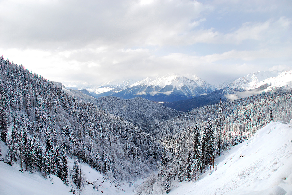 Winter at Borjomi-Kharagauli National Park, Georgia
