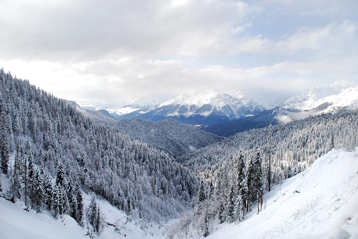 Winter at Borjomi-Kharagauli National Park, Georgia