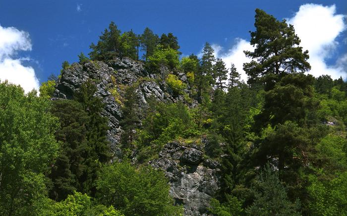 Borjomi-Kharagauli National Park, Georgia by Kvabiskhevi K.G.