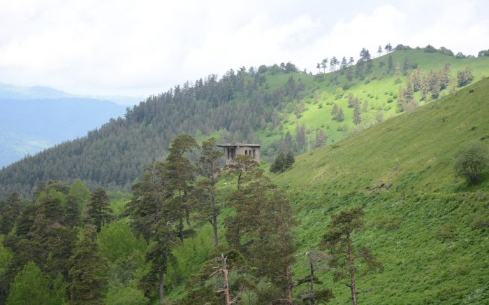 Borjomi-Kharagauli National Park Hut For Hikers