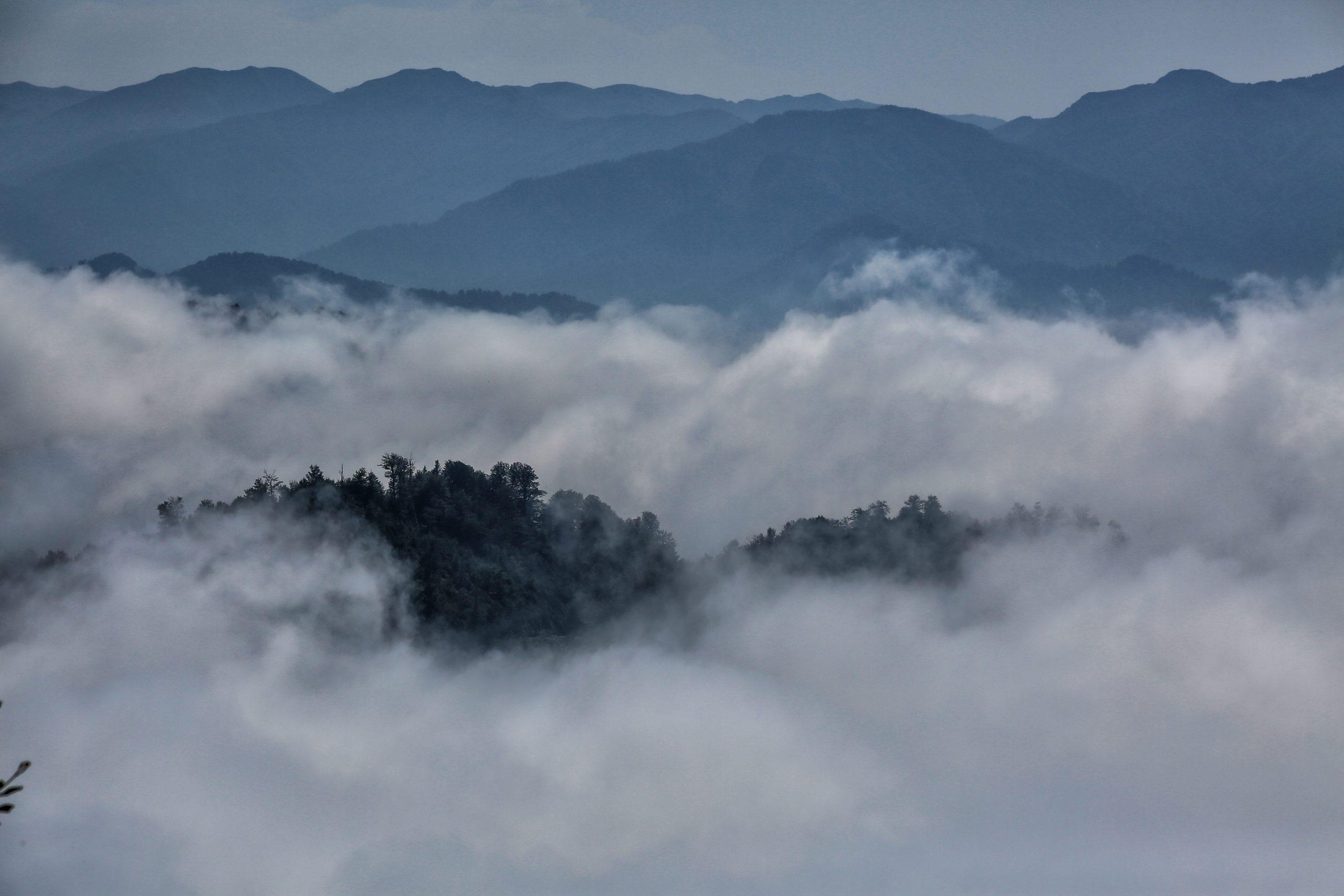 Mtirala National Park. View from Mtirala Mountain. 09/2017 Photographer: Paata Vardanashvili Copyright: Agency of Protected Areas