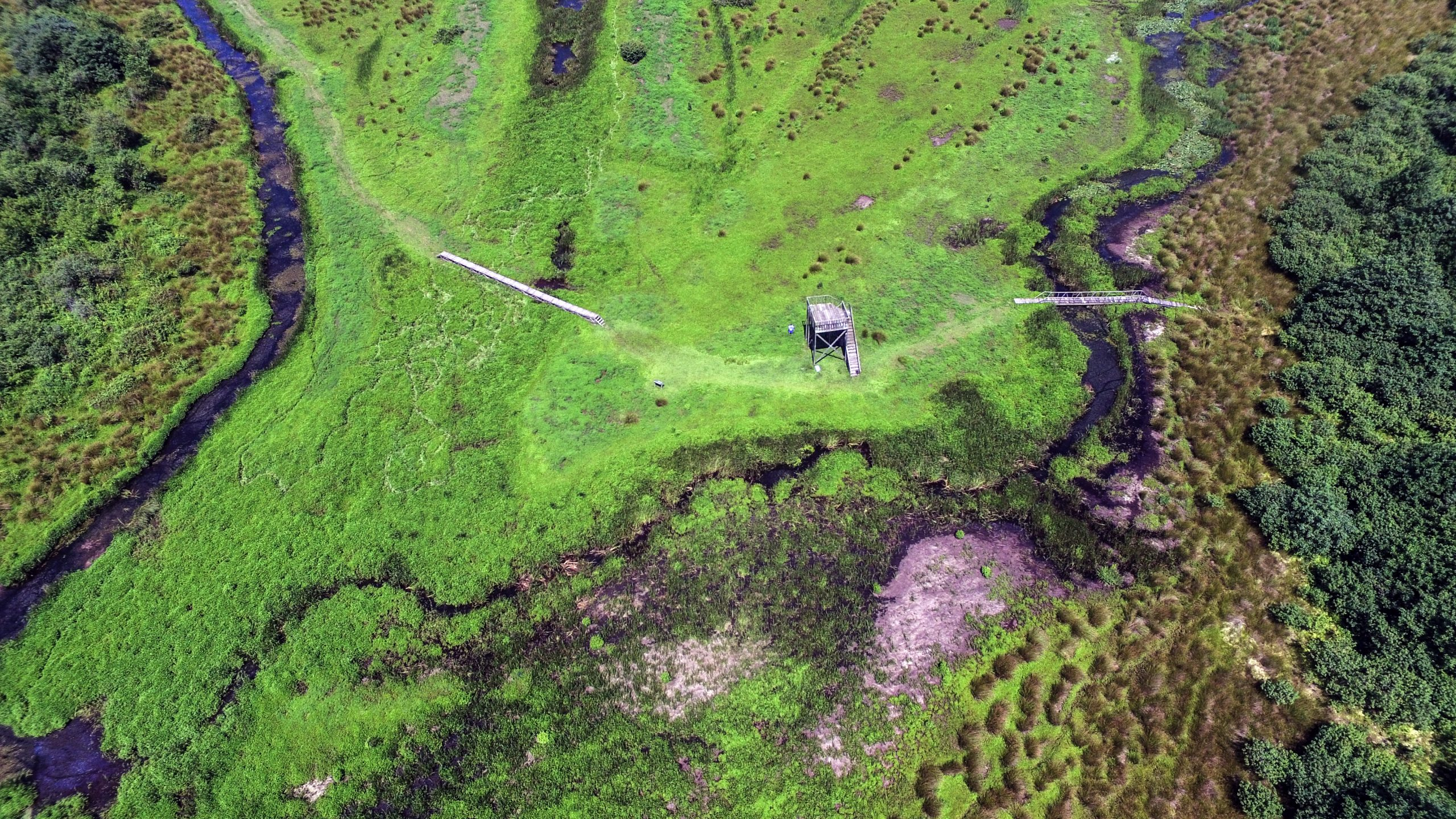 Kobuleti Protected Areas. Aerial view, partial (Kobuleti Strict Nature Reserve and Kobuleti Managed Reserve).